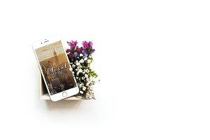 Floral iPhone 6 Mockup - IV