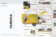 Tanesia - Google Slide Template