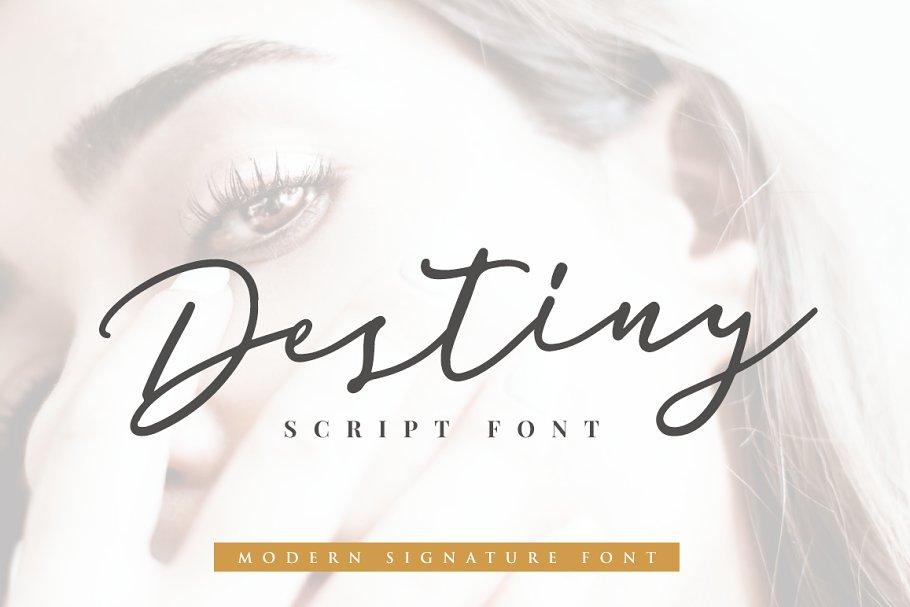 Destiny Signature Font ~ Script Fonts ~ Creative Market