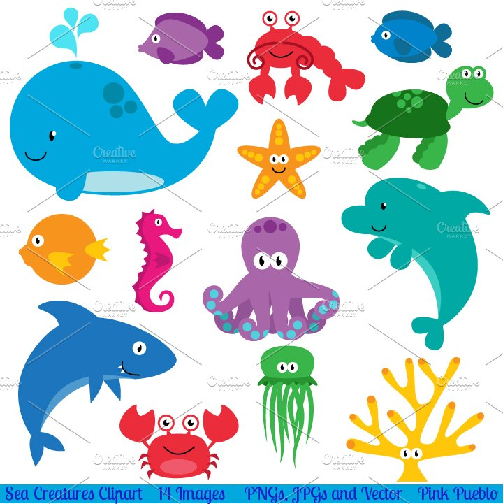 Sea Animals Vectors and Clipart ~ Illustrations ~ Creative ...