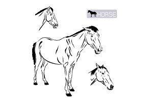 Line art of horse