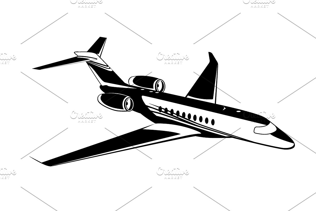 Private jet, airplane icon, vector