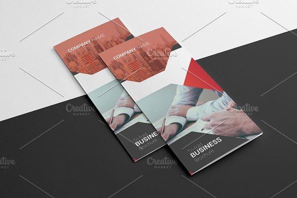Business Trifold  Brochure V893