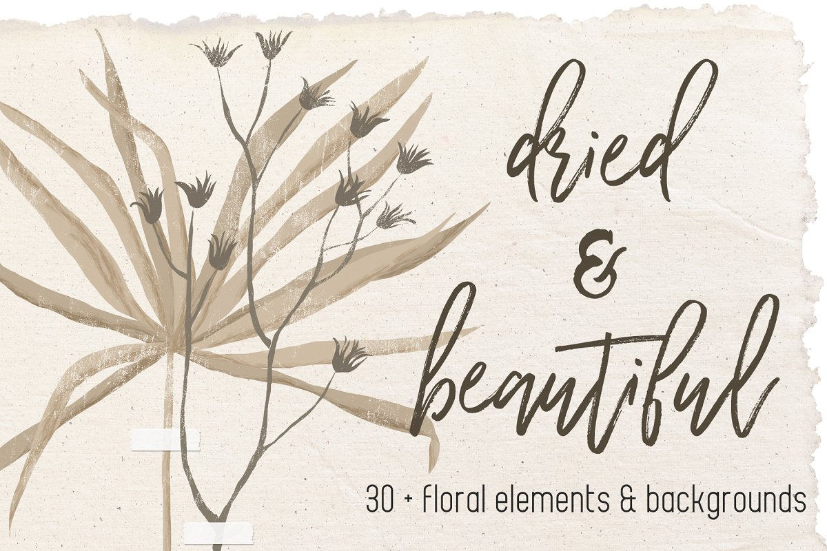 Dried flowers and backgrounds