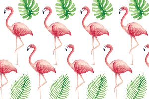 flamingo/ tropics vector