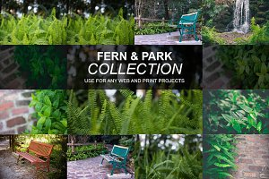 Park and Ferns Collection