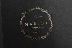 Elegant & Classy Gold Logo
