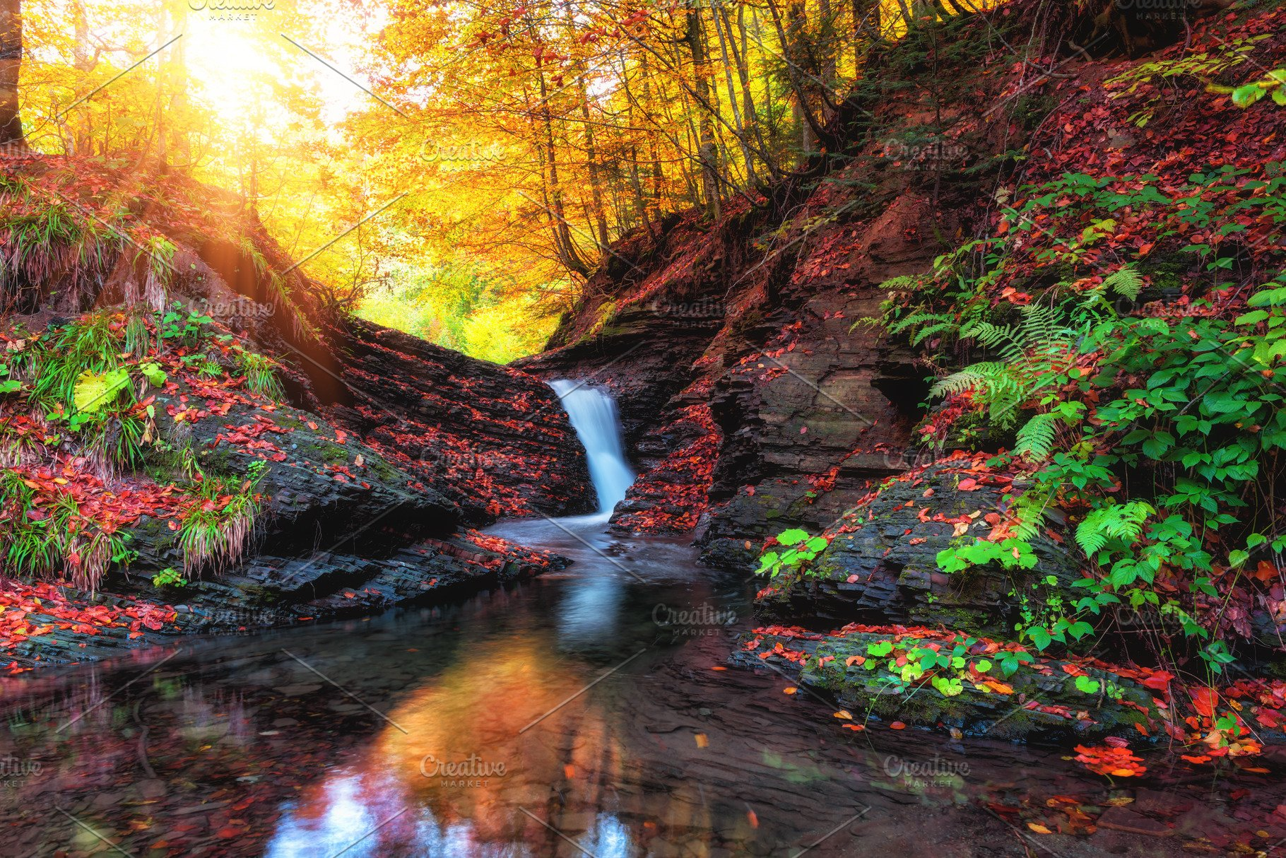 Amazing Nature Autumn Landscape With High Quality Nature Stock