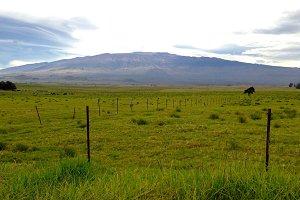 Mauna Kea, Hawaii Mountain