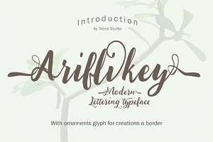Ariflikey Typeface (30% Off)