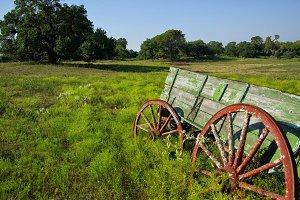 Rustic Green Wagon