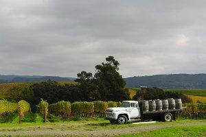 Napa Wine Truck