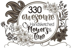 330 Awesome Sketched Flowers & Line