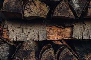 A Pile of Firewood #10