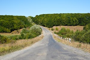 Old road through field and forest