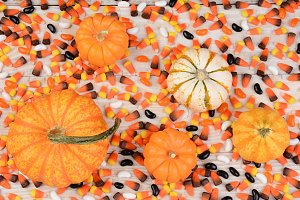 pumpkins&#x3B; gourds&#x3B; decorative&#x3B; orname