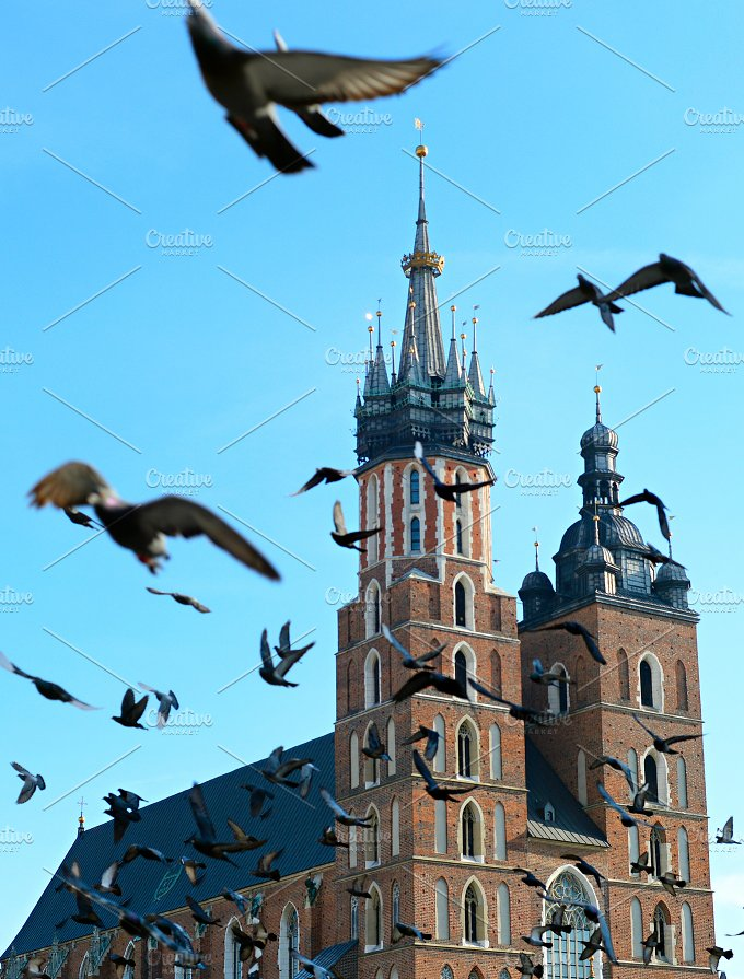 Pigeons above St. Mary's Church - Architecture