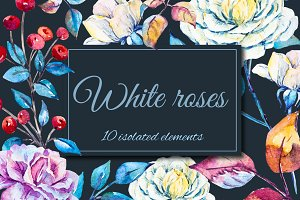 Watercolor white rose elements