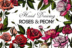 Hand drawing Roses and Peonies