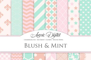 Blush and Mint Digital Paper