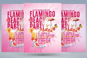 Flamingo Beach Party Flyer