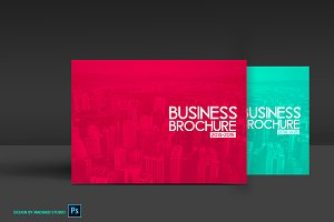 12 Pages Business Brochure