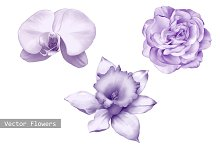 Orchid, Rose and Daffodil flower