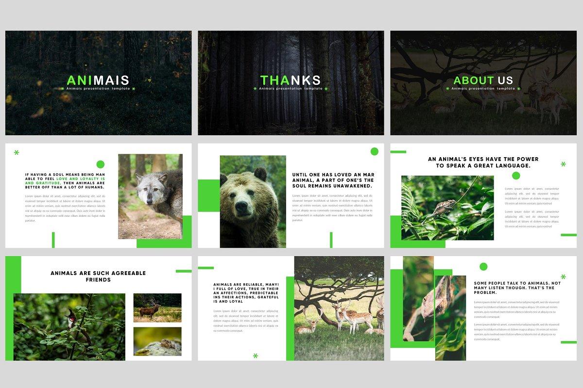 Animais Nature Powerpoint Template Powerpoint Templates