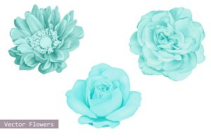 Set of Blue Flowers: Dahlia and Rose