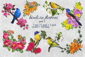 World of birds and flowers Part2