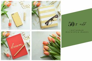 Tulip Dreams 50% Bundle Stock Images