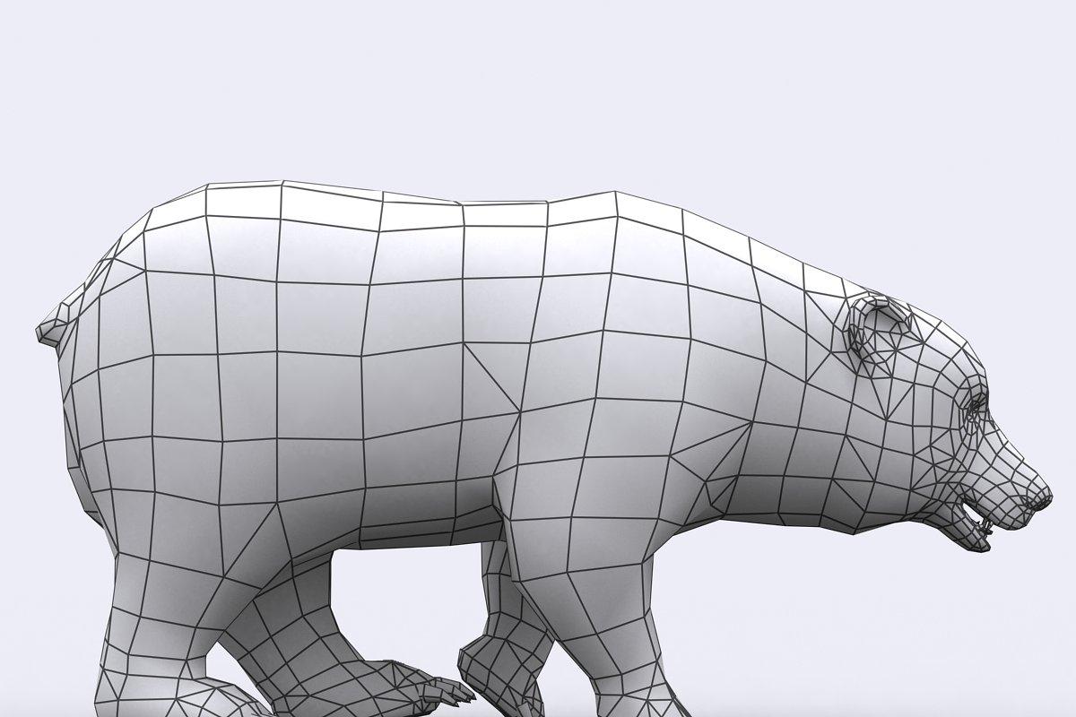 3DRT - Wild animals - Bear