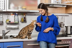 Cat and girl in the kitchen.