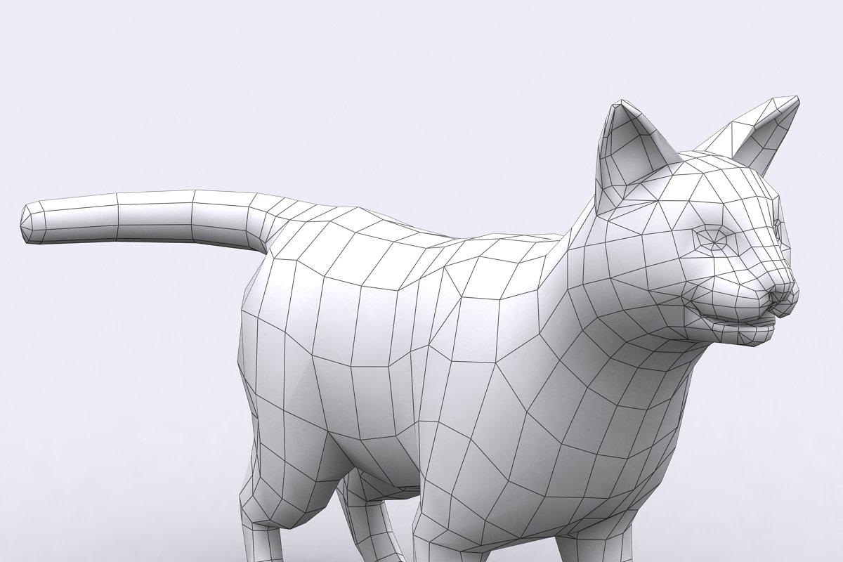 3DRT - Domestic animals - Cat