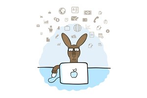 Kangaroo in the office