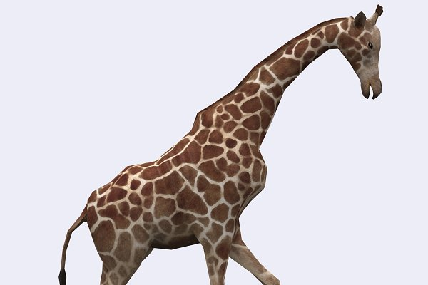 3DRT - Safari animals - Giraffe