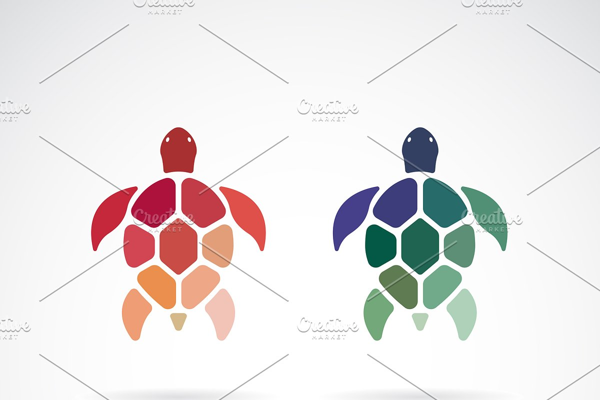 Vector of two colorful turtles.