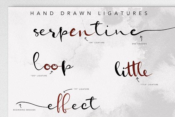 Serpentine Script Font Family