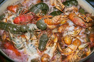 Fresh crayfish are cooked in a pot with boiling water