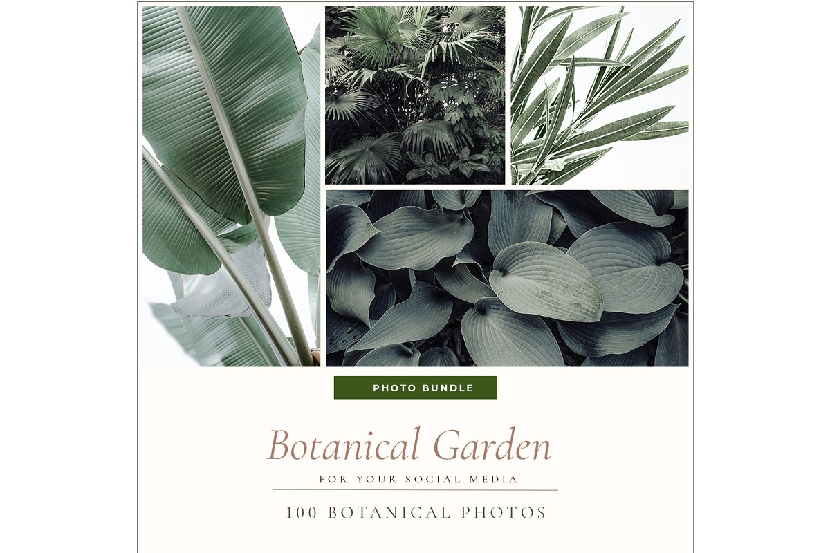 BOTANICAL GARDEN. 100 photos