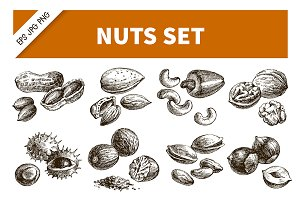 Hand Drawn Sketch Nuts Vector Set