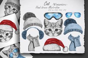 Cat / Wintertime