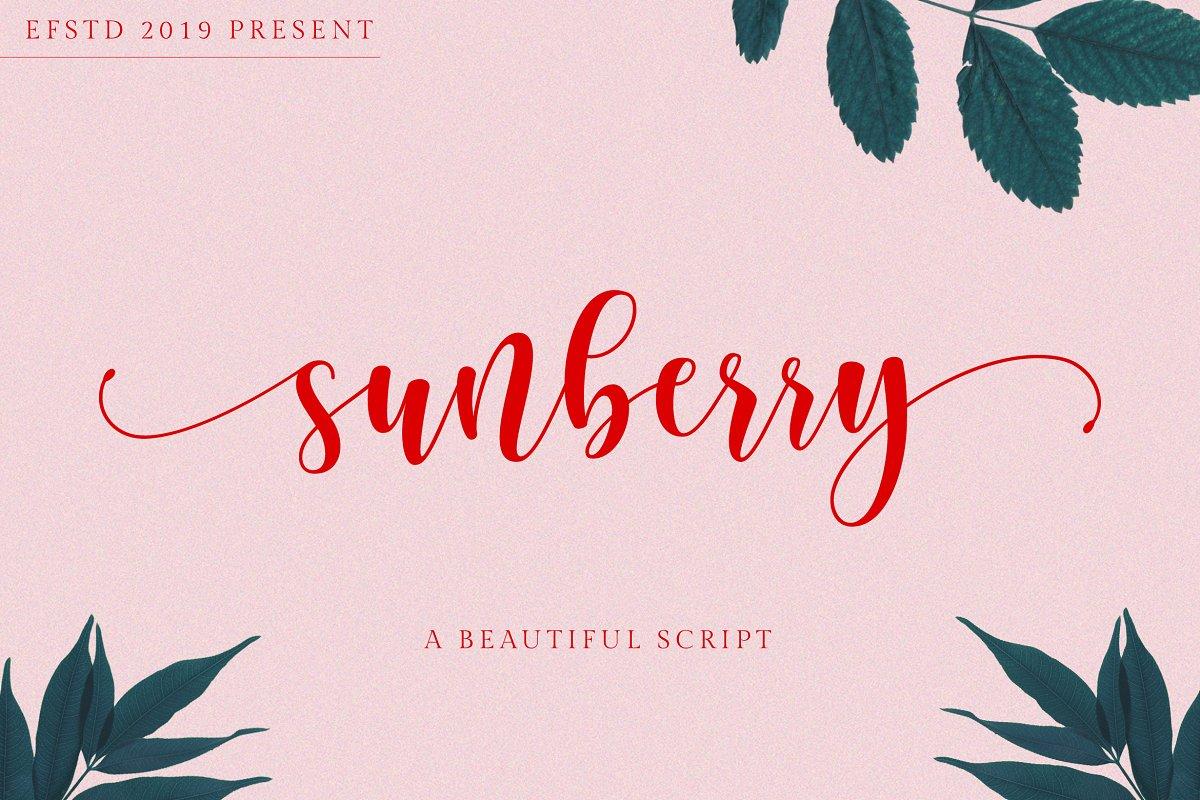 Sunberry   Beautiful Script ~ Script Fonts ~ Creative Market