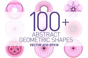 Abstract Geometric Vector Bundle