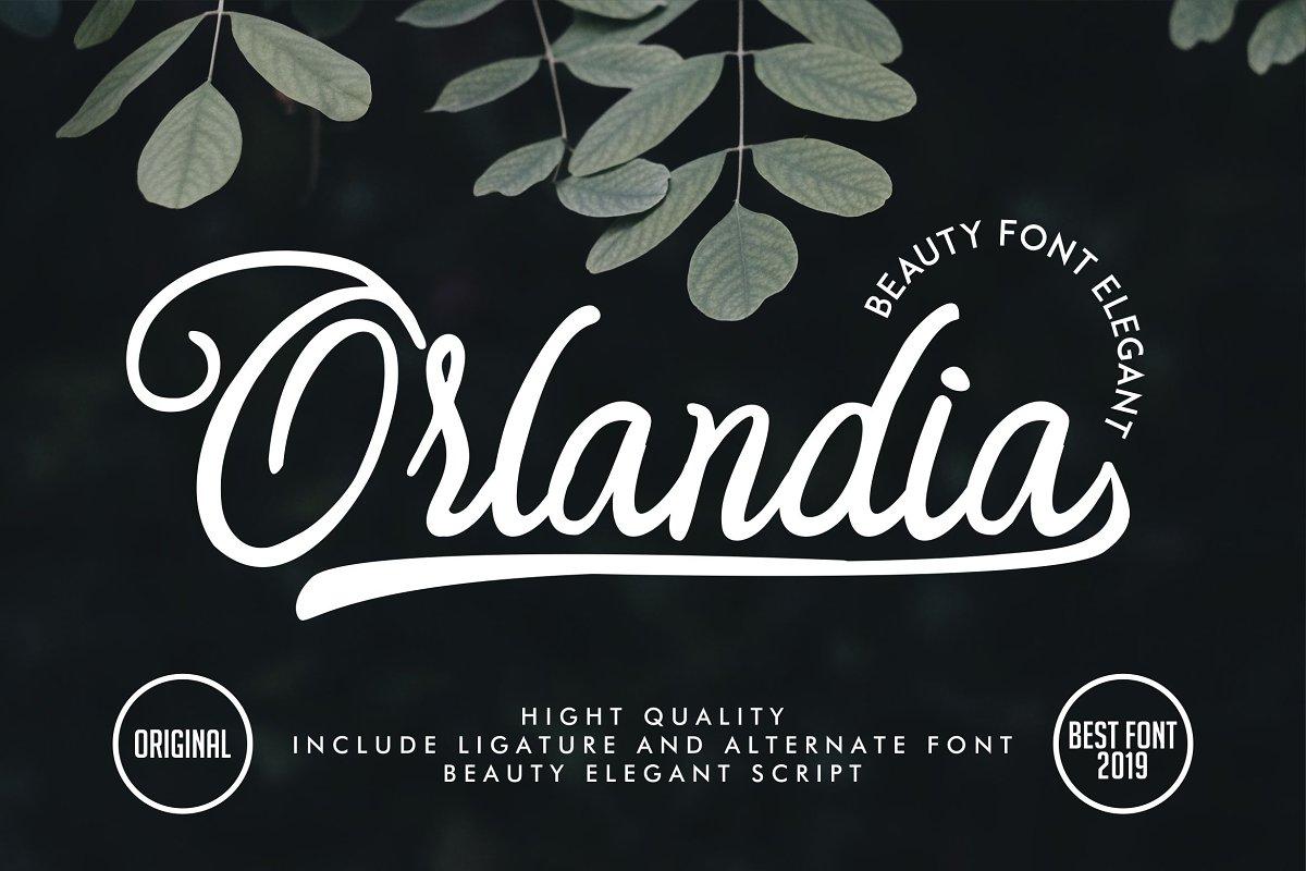 Orlandia | Beauty Font Elegant