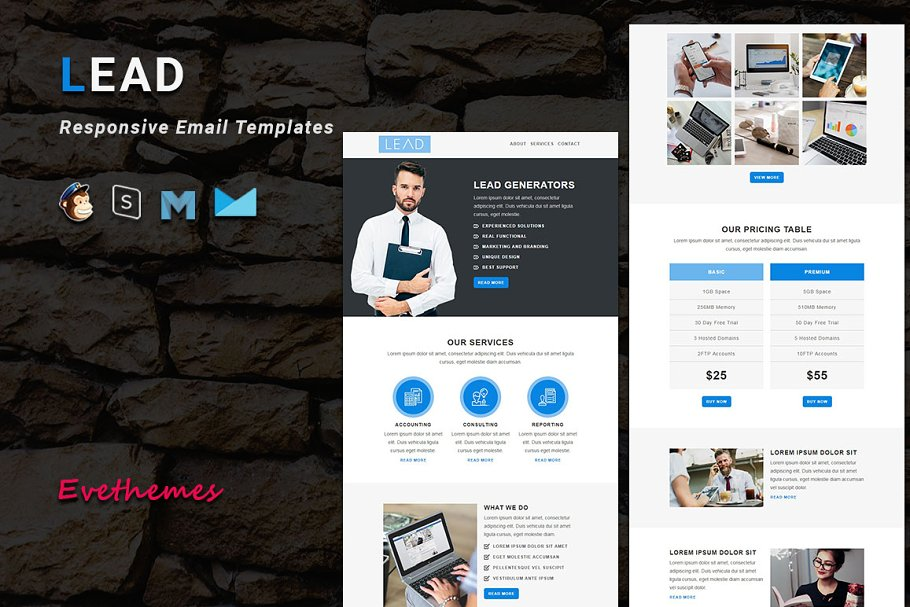 LEAD - Responsive Email Template