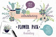 Flower Pack with succulents