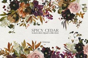 Spicy Cedar Watercolor Fall Clipart