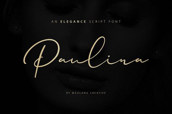 Best Paulina Elegance Script Font Vector
