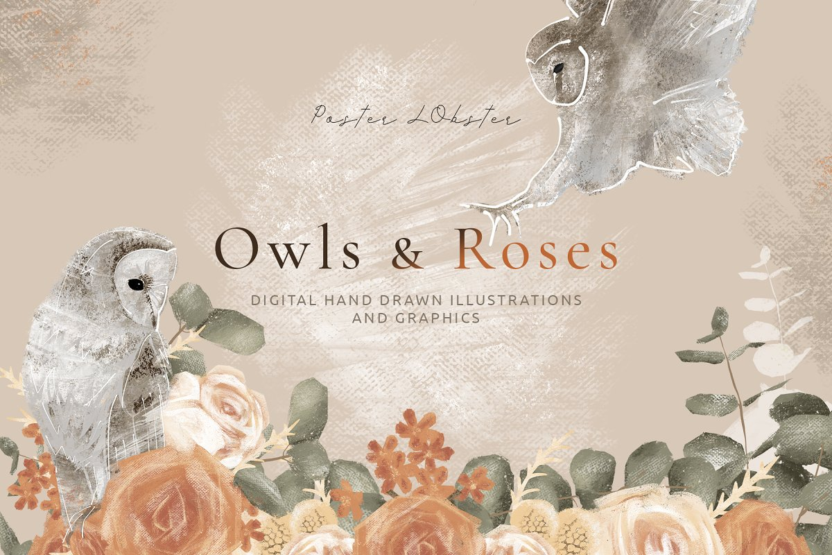 Hand drawn Graphics Owls & Roses